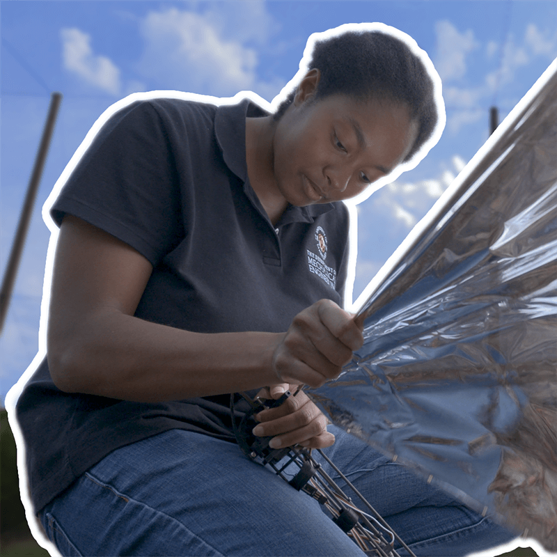 Lena Johnson working on Robo Raven V